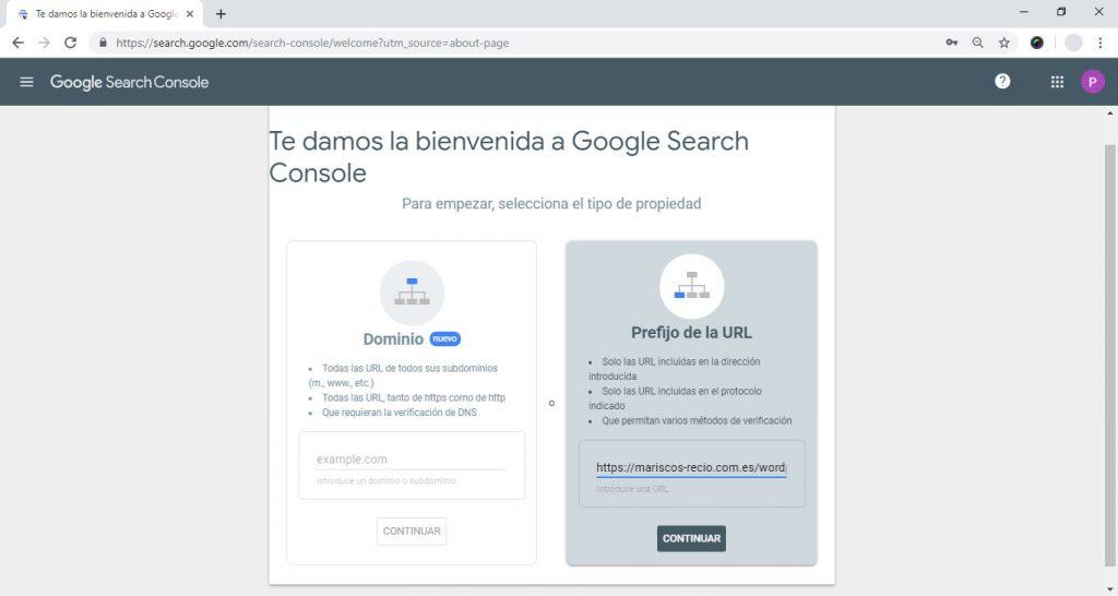 Añadiendo nuestro sitio a la Search Console